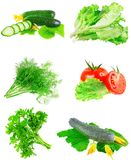 Collage av grönsaker på vit bakgrund. Arkivfoto