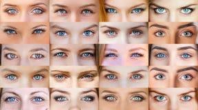 Collage av härliga kvinnliga ögon royaltyfri fotografi