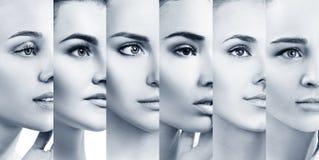 Collage av härliga kvinnor med perfekt hud arkivbild