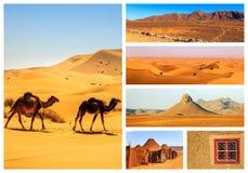 Collage av härliga landskap av den marockanska öknen royaltyfri foto