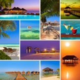 Collage av Maldiverna strandbilder (mina foto) Royaltyfri Bild