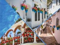 Collage av Mijas med blomkrukor i fasader andalusian bywhite costa del solenoid Arkivfoto