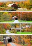 Collage av New England täckte broar Royaltyfri Foto