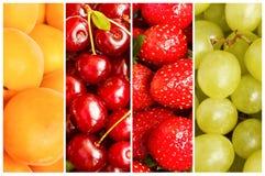 Collage av ny sommarfrukt i form av vertikala band fotografering för bildbyråer