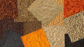 Collage av olik kryddabakgrund Samling av kryddor fotografering för bildbyråer