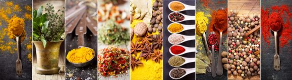 Collage av olika örter och kryddor arkivfoto