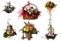 Collage av olika färgrika blommaordningar Fotografering för Bildbyråer