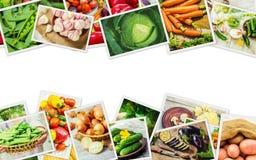 Collage av olika grönsaker Royaltyfria Bilder