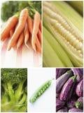Collage av olika grönsaker arkivfoto