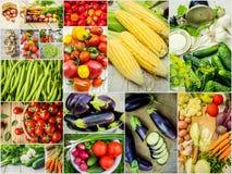 Collage av olika grönsaker Vegetarisk mat Fotografering för Bildbyråer