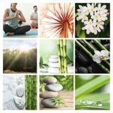 Collage av olika härliga bilder arkivfoto