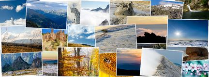 Collage av olika naturfoto Royaltyfri Fotografi