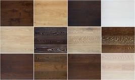Collage av olika trägolvtexturer royaltyfri bild