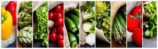 Collage av olika typer av nya grönsaker Arkivbilder