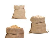 Collage av påsar med korn. Arkivfoto