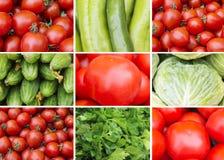 Collage av röda och gröna grönsaker Royaltyfri Fotografi