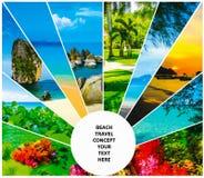 Collage av sommarstranden avbildar - natur- och loppbakgrund royaltyfria bilder