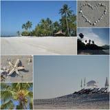 Collage av strandparadiset Royaltyfria Bilder