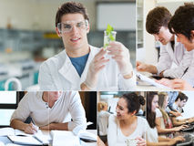 Collage av studenter som gör kemi Royaltyfri Bild