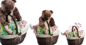 Collage of baby girl in basket with toy bear isolated on white background. The concept of childhood and holiday Royalty Free Stock Photography