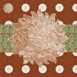 Collage background images from various brown plant natural patte. Autumn Patterns Indian natural earthy colors, paint background in vector field, sun flowers Royalty Free Stock Image