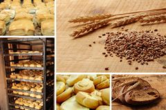 Collage bakery with grid. Collage industrial bakery with grid Stock Photo