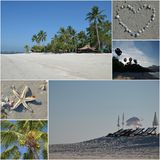 Collage of beach paradise. Collage of tropical paradise with beach, palm trees and ocean Royalty Free Stock Images