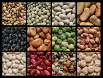 Collage of beans. Collage showing different kind of beans like green peas, black eyed beans and brown fava Royalty Free Stock Photo