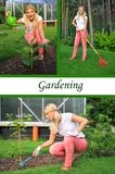 Collage. Beautiful casual woman gardening Royalty Free Stock Photography