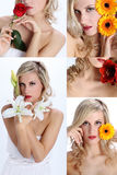 Collage of beautiful girl with various flowers. Collage composition of beautiful girl with various flowers Royalty Free Stock Photos
