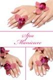 Collage.Beautiful hand met perfecte manicure stock afbeelding