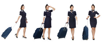Collage, Beautiful stewardess holding suitcase isolated on white. Collage, Portrait in full growth stewardess holding suitcase isolated on white background Royalty Free Stock Images