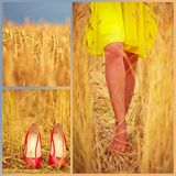 Collage of beautiful young woman's feet on summer wheat field Stock Photos