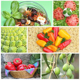 Collage Bella Italia - typical italian fresh food. Collage of six pictures - typical italian fresh food: mixed olives with feta, caprese salad, romanesco cabbage Royalty Free Stock Photo