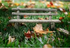 Collage bench in autumn grass. Royalty Free Stock Images