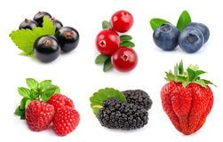 Collage of berry Stock Photos