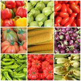 Collage with bio vegetables Stock Photos