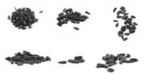 Collage of black sunflower seeds Royalty Free Stock Photography