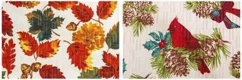 Collage blanc cardinal rouge d'affichage de feuille d'automne Photographie stock libre de droits