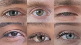 Collage of Blinking Eye, Close Up stock footage