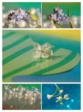 Collage with blue flower Royalty Free Stock Photo