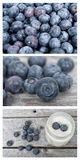 Collage of blueberries fruits Stock Images