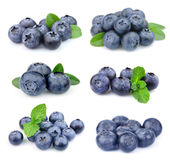 Collage of blueberries royalty free stock photos