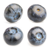 Collage of blueberries on  on white background Royalty Free Stock Photos