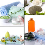 Collage of body care and spa products Royalty Free Stock Photo