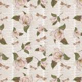 Collage botánico antiguo - elegancia lamentable - magnolias - papel de Digitaces de la página del diccionario libre illustration