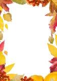 Collage brillante, colorido de las hojas de otoño, para el marco, verticales Foto de archivo