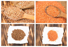 Collage of buckwheat and lentils Stock Photo