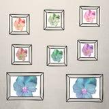 Collage capítulo de la foto - flor libre illustration