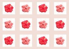 Collage capítulo de la foto - flor - hibisco stock de ilustración
